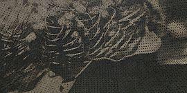Apavisa Artec 7.0 Black decor 60x120